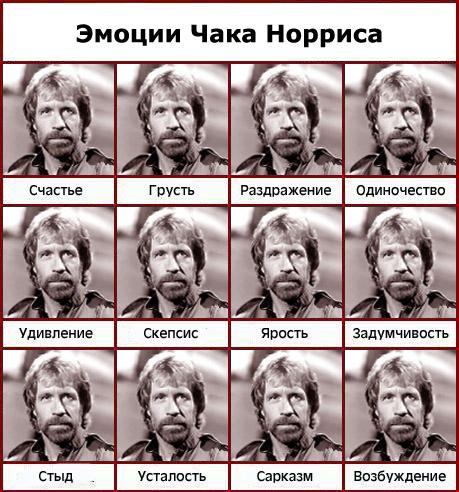 http://fafka.ru/wp-content/uploads/2009/04/emocii-chaka-norrisa.jpg