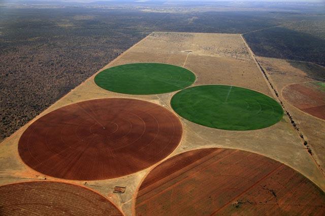 Фотография африканских полей
